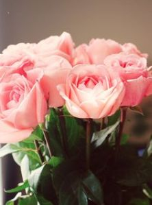 The smell of roses can evoke precious memories