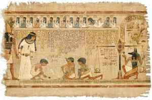 papyrus2